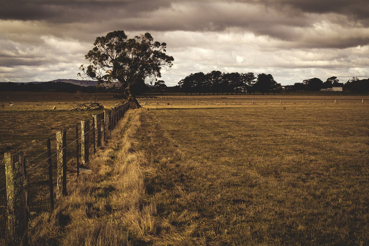 Knowing Average Rates for Agriculture Expenses, Part 1